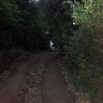 Camino a Los Madroños