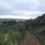 Bajando a Los Madroños