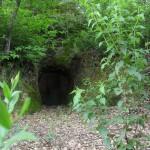 Cueva del cuco camino de la casa