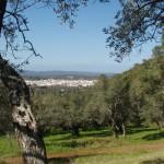 Vista de El Pedroso